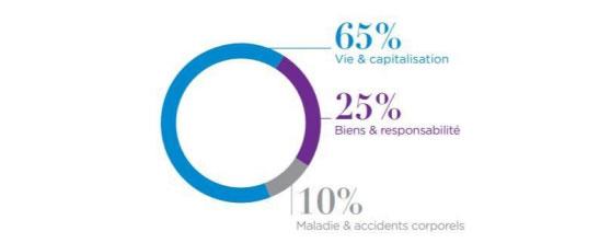 Répartition du chiffre d'affaire de l'assurance en France